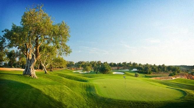Amendoeira Faldo Course (Oceânico) - Faro - Portogallo - Mazze da golf da noleggiare
