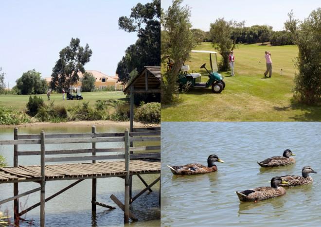 Beloura (Pestana Golf Resort) - Lisbonne - Portugal - Location de clubs de golf