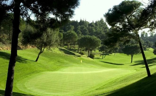 Alquiler de palos de golf - El Chaparral Golf Club - Málaga - España