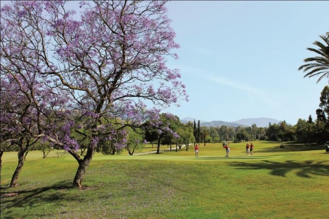 Clubs to hire - El Paraiso Golf Club - Malaga - Spain