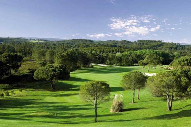 Golden Eagle (Quinta do Brinçal) - Lisbon - Portugal - Clubs to hire