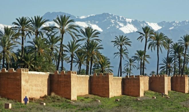 Golf de la Palmeraie - Marrakech - Marocco - Mazze da golf da noleggiare