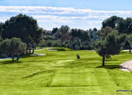 Villamartin Golf - Alicante - España - Alquiler de palos de golf